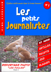 page journal.png